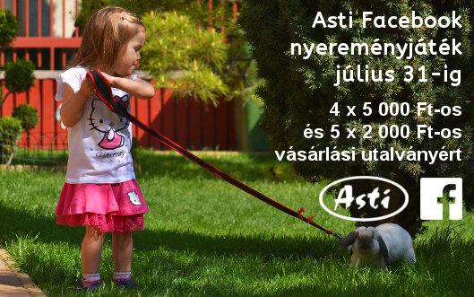 Asti Facebook nyereményjáték